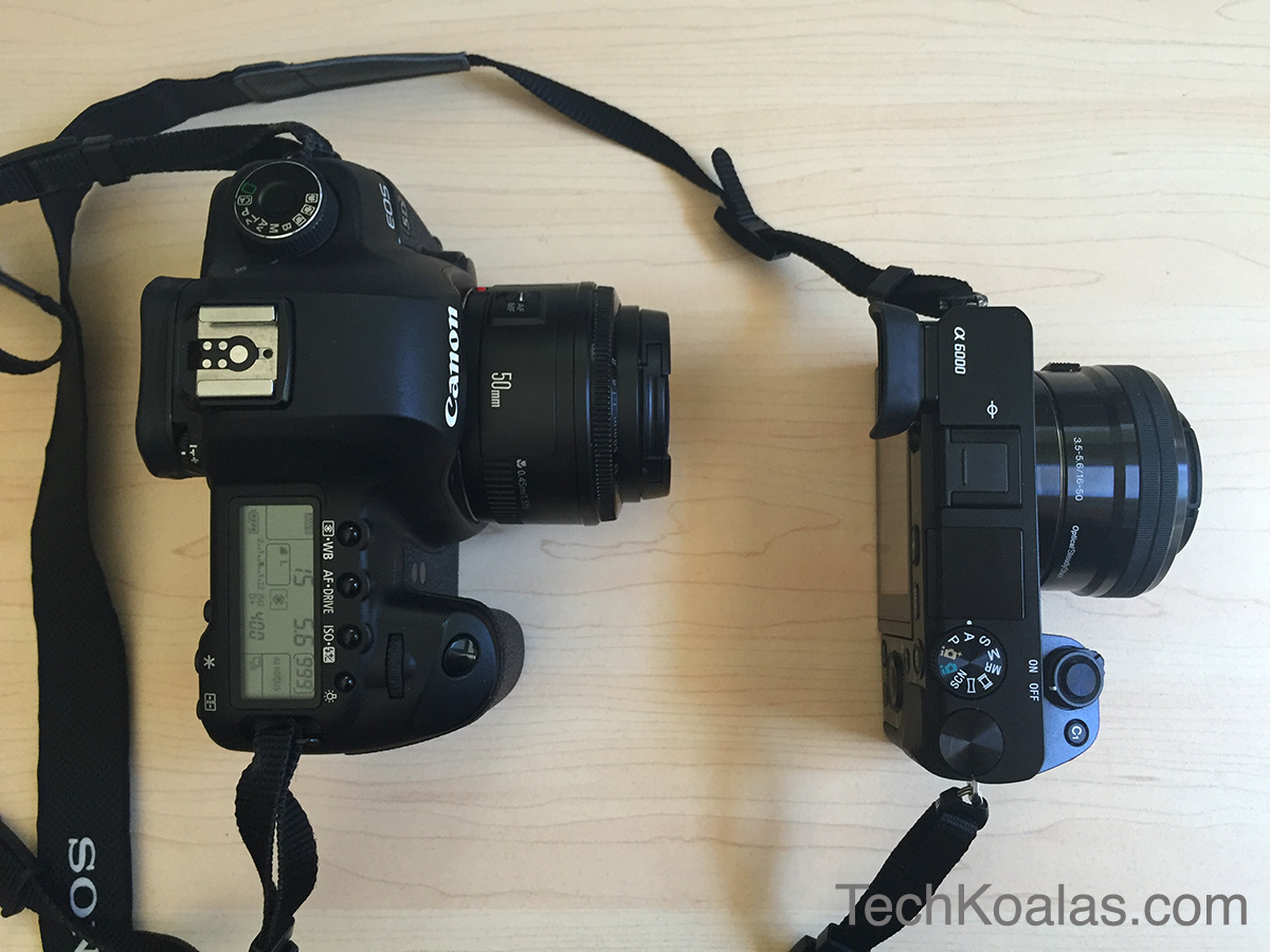 Sony Mirrorless Camera A6000 And Canon Dslr 5d Mk Ii Side By Side